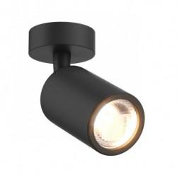 Потолочный светильник Zuma Line Tori 20016-BK