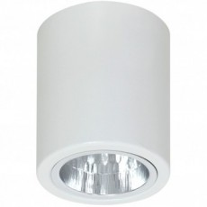Luminex 7236 Downlight