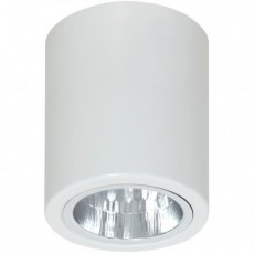 Luminex 7234 Downlight