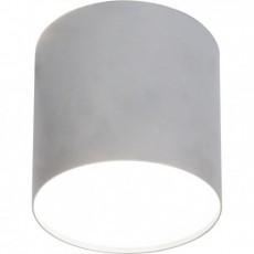 Точечный светильник Nowodvorski 6527 POINT PLEXI